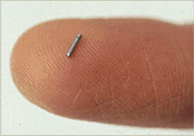 radiation therapy seed implants
