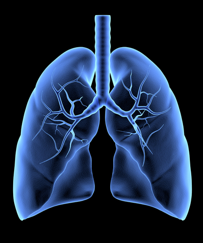 Stereotactic Body Radiotherapy Can Treat Early Stage Lung Cancer In Inoperable Patients