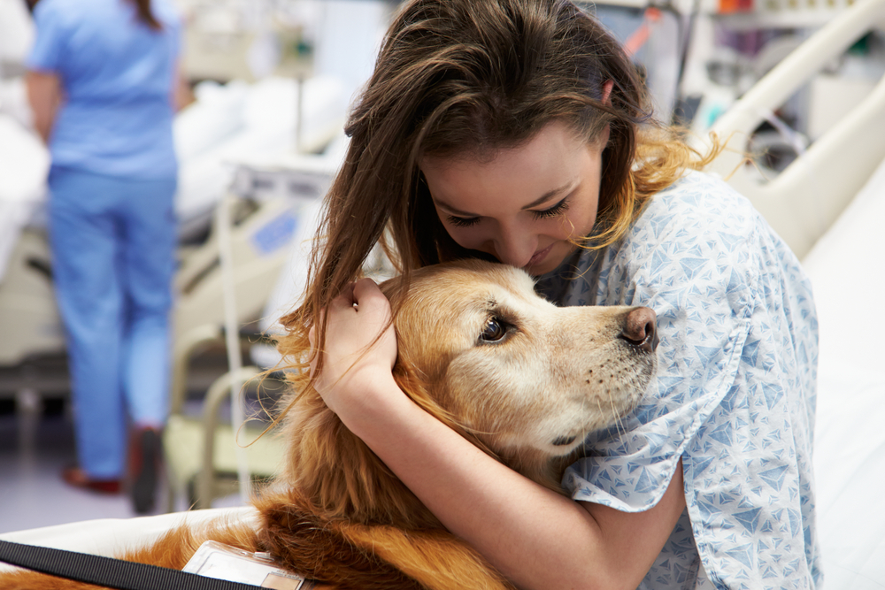 Patients Undergoing Radiation Therapy Benefit From Animal Assisted Therapy